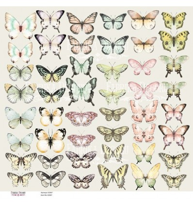Set of of pictures for cutting Butterflies